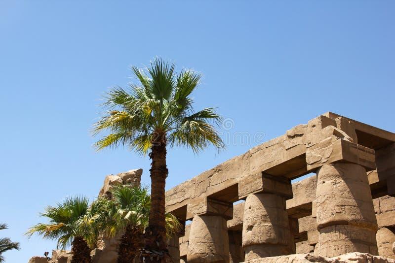 Antigua arquitectura egipcia y palmeras en el complejo del templo Karnak en Luxor fotos de archivo libres de regalías