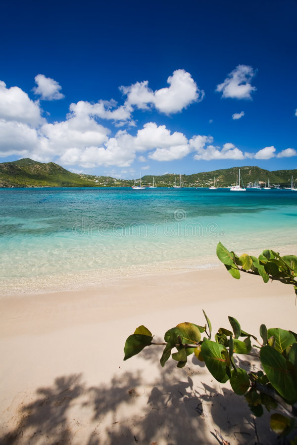 Free Antigua Explorations Stock Photo - 4587710