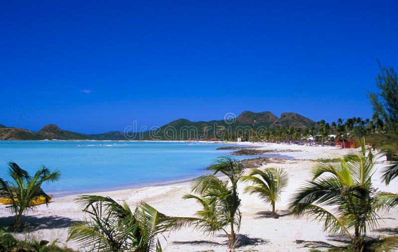 Antigua, Karaiby zdjęcie stock