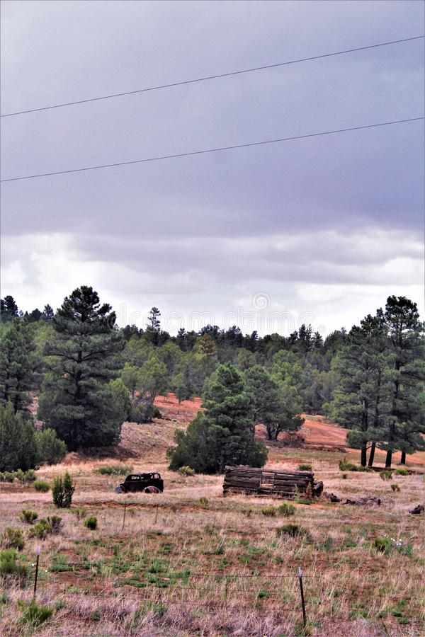 Antik bil och partisk journalkabin i linden, Navajo County, Arizona, Förenta staterna royaltyfria bilder