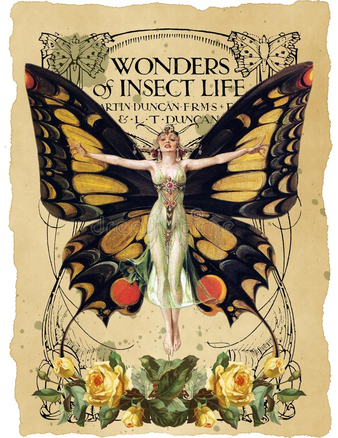 Antik botanisk collage - Art Nouveau Butterfly Illustration - vattenfärg - tappningnotblad - bekymrad pappers- bakgrund stock illustrationer