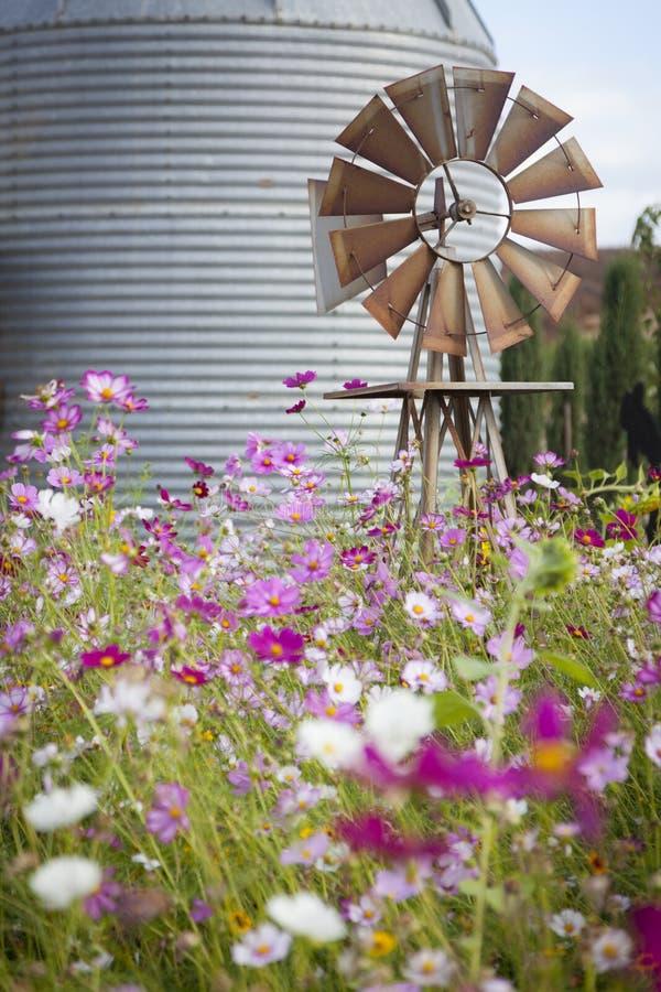 Antik lantgårdväderkvarn och silo i ett blommafält fotografering för bildbyråer