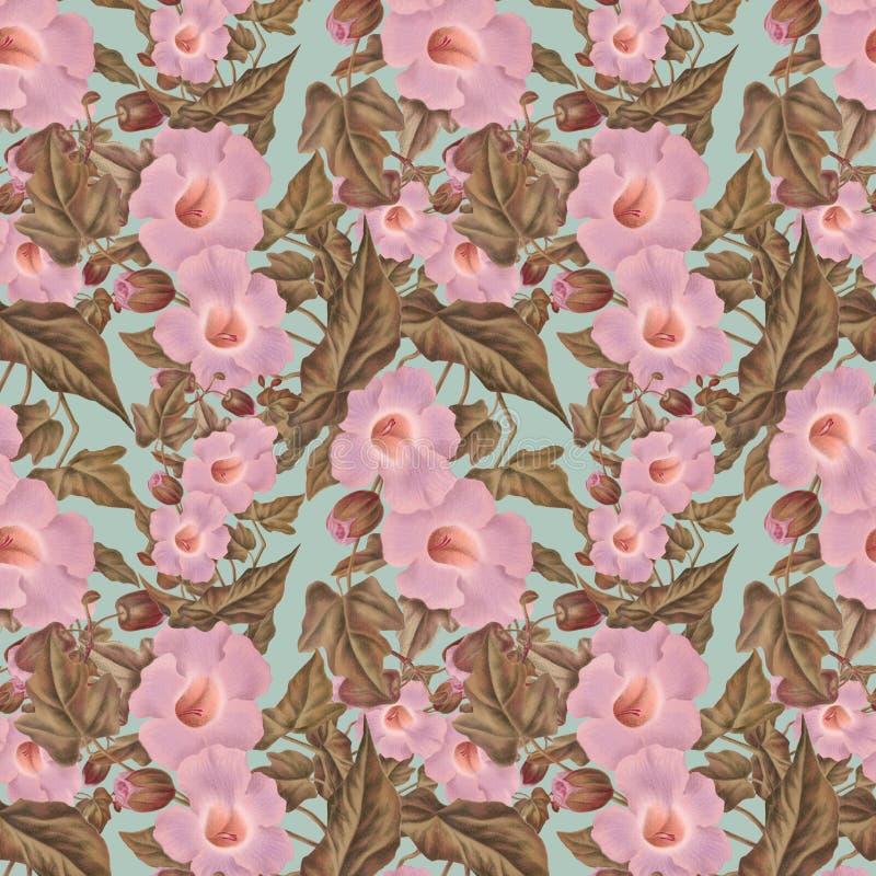 Antik rosa blommamodell för antik tappning royaltyfri illustrationer