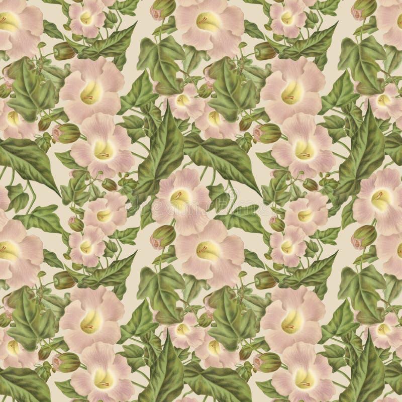 Antik rosa blommamodell för tappning royaltyfri illustrationer