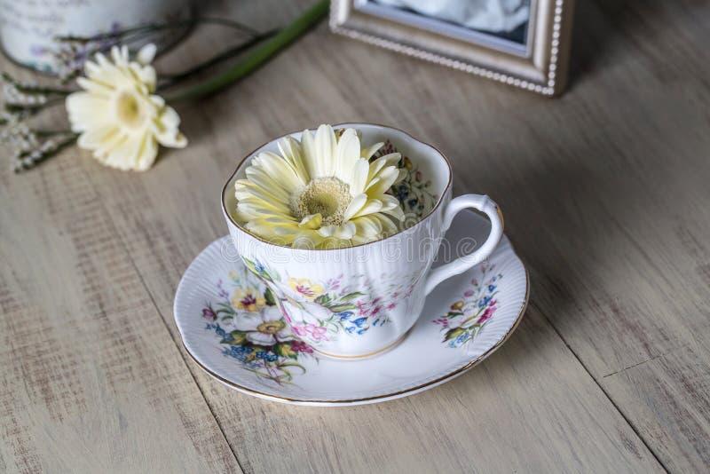 Antik tekopp och guling Daisy Flower royaltyfri fotografi