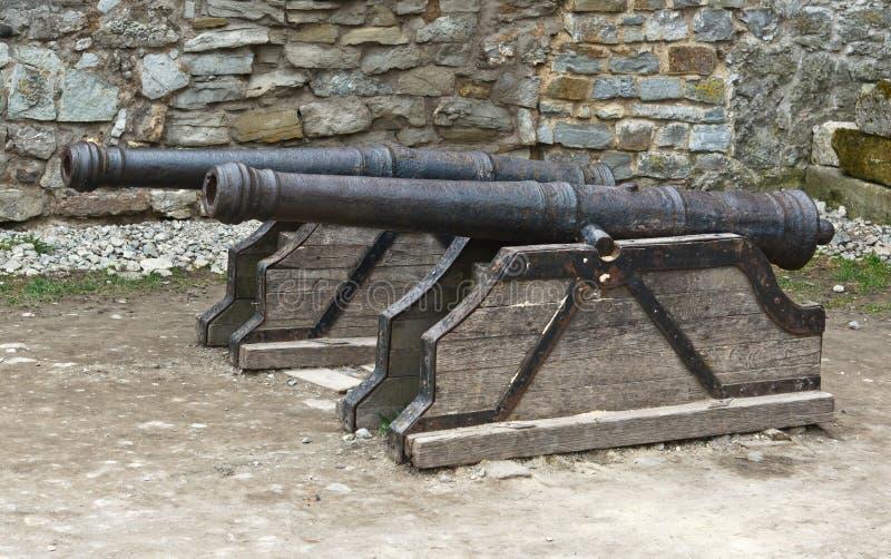 Antike Gewehren lizenzfreie stockbilder