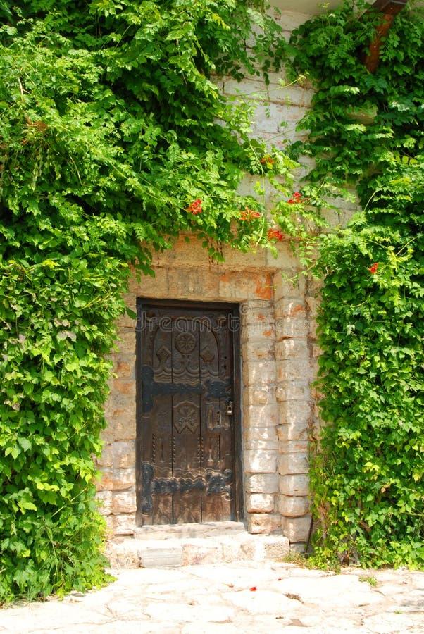 Antike Tür und Reben lizenzfreies stockfoto