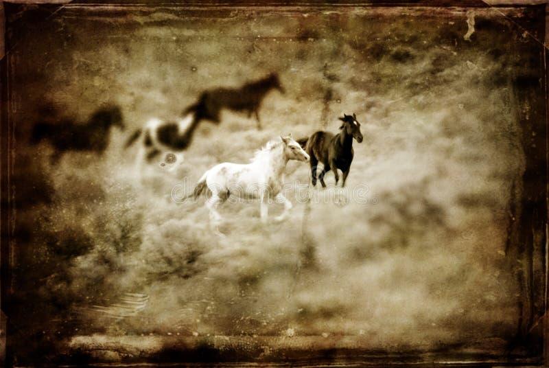 Antikes westliches Pferd stockfotografie