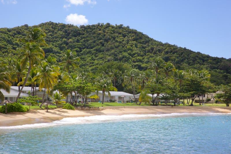 Antillen, Karibische Meere, Antigua, St Johns, Hawksbill-Bucht u. Strand lizenzfreies stockfoto