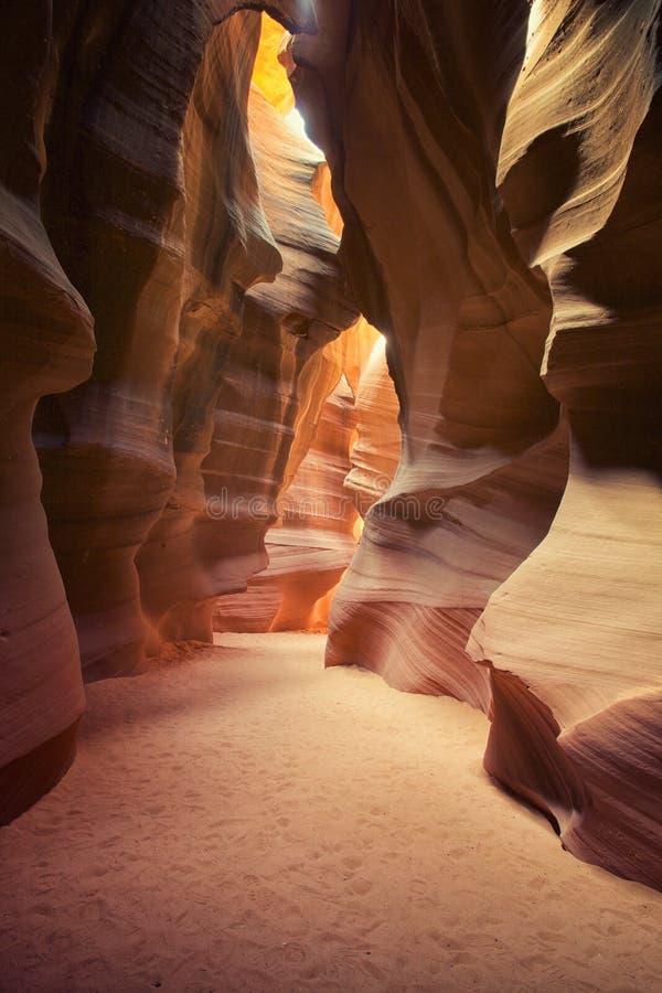 antiloparizona kanjon royaltyfria foton