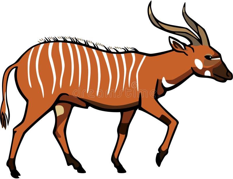 Antilope del bongo illustrazione vettoriale
