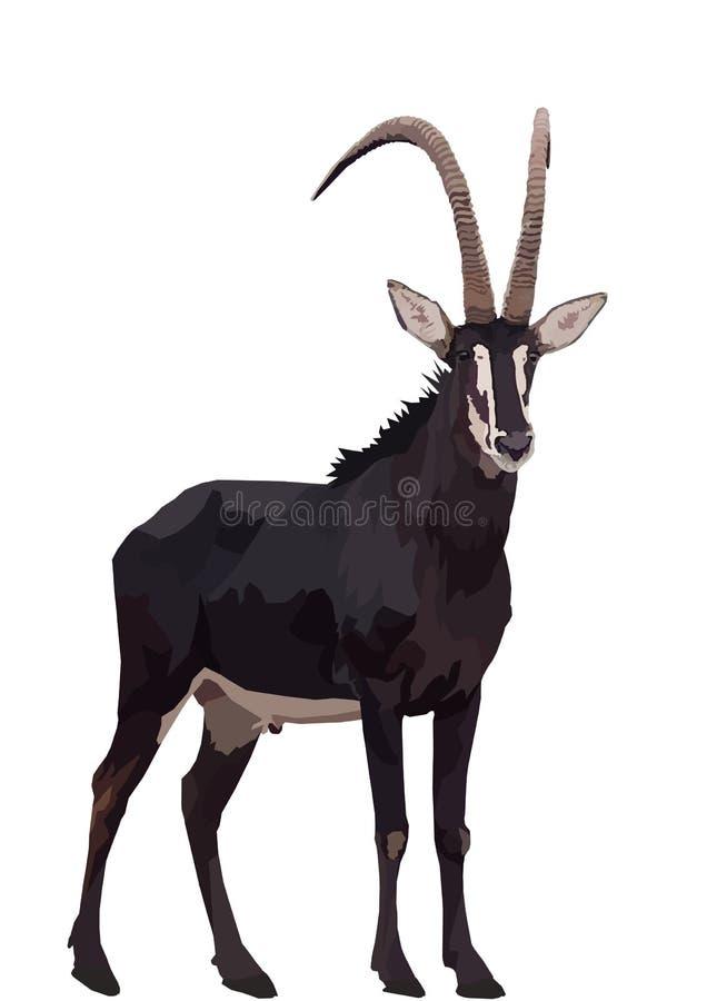 Antilope di Sable in erba verde fertile royalty illustrazione gratis