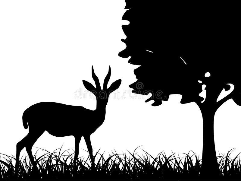 Download Antilope in the grass stock vector. Illustration of farms - 5903332