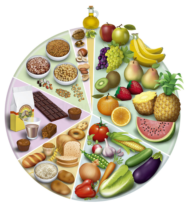 Antioxidant Foods. Illustration of the wheel of the antioxidant nutrients of the proportions of use aconsegables stock illustration