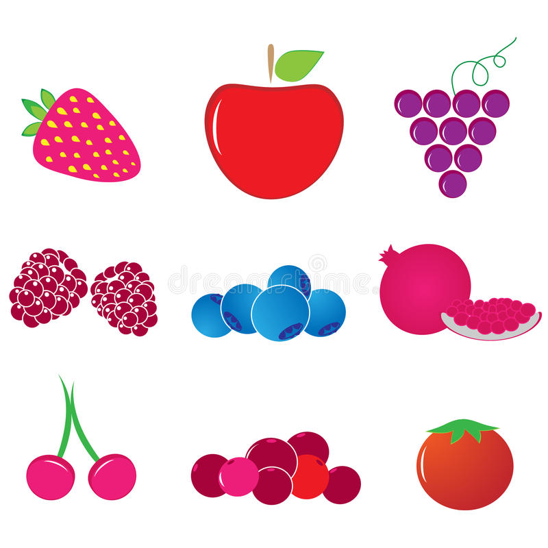 Antioxidant fruit vector. On white background stock illustration