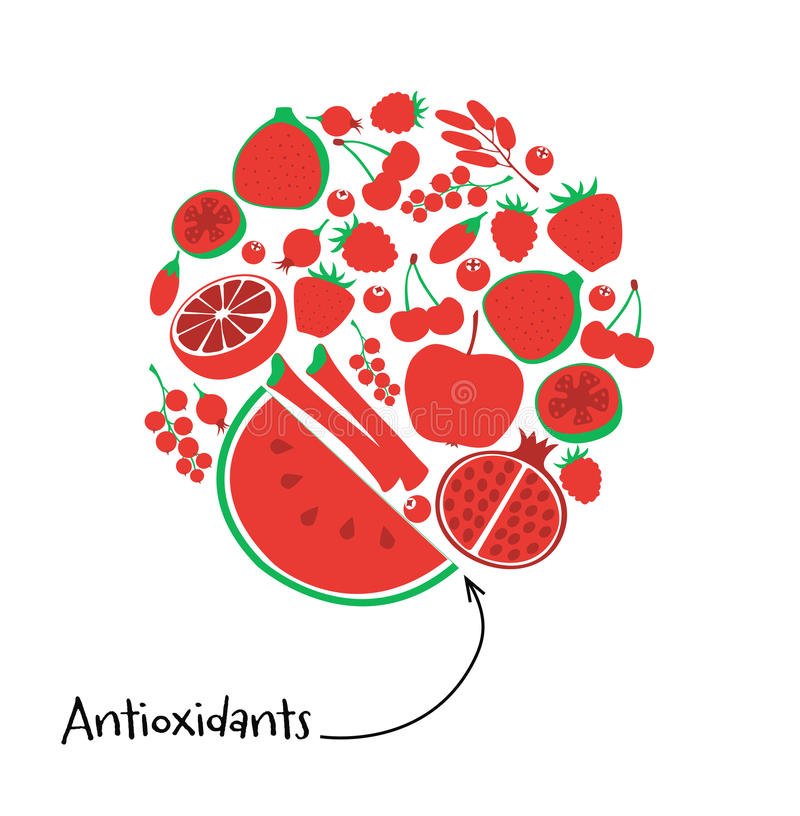 Antioxidant red fruit and berry icon set. Round illustration vegetarian fresh healthy dessert. Vegan food diet pomegranate royalty free illustration