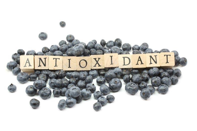 antioxidantblåbär royaltyfri bild