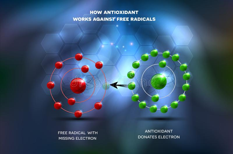 Antioxydant arbeitet gegen freies Radikal lizenzfreie abbildung