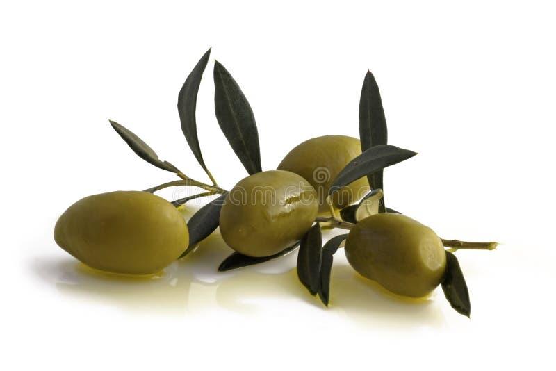 Antipasti - Oliven lizenzfreie stockfotografie