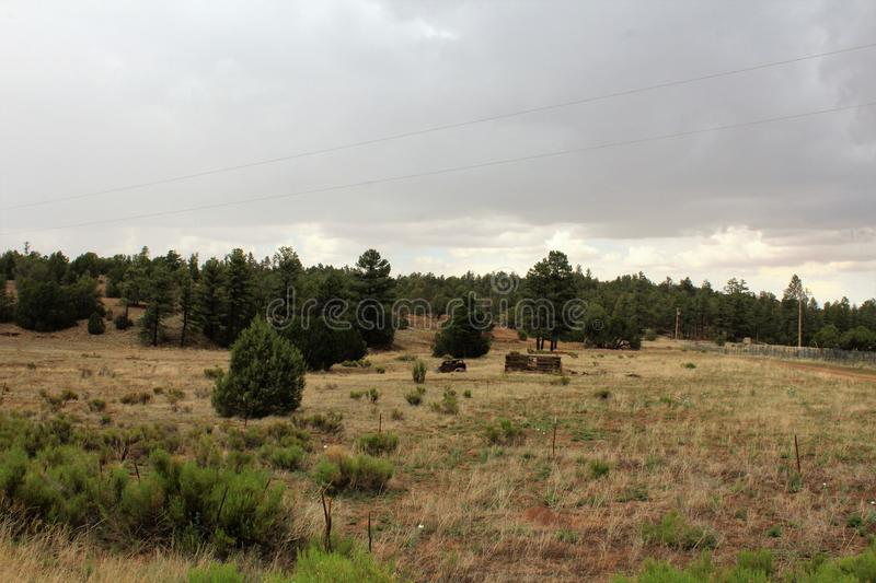 Antique Car and partial log cabin in Linden, Navajo County, Arizona, United States. Antique Car and partial abandoned log cabin in a field surrounded by trees stock photography