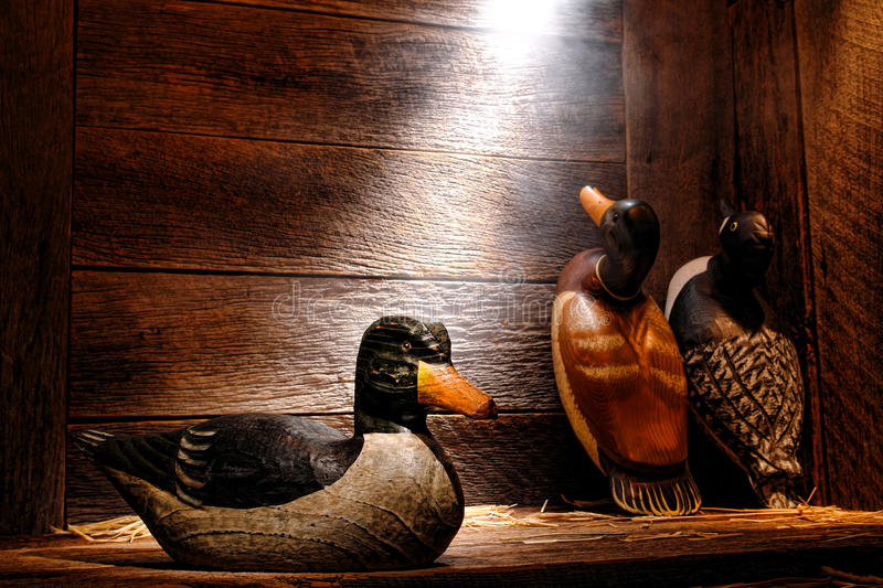 Antique Carved Wood Duck Decoy in Old Hunting Barn. Antique carved wood hunting duck decoy and aged traditional vintage decoys in an old wooden hunter barn or royalty free stock images