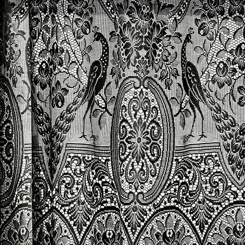 Antique Curtains in Black and White royalty free stock photography