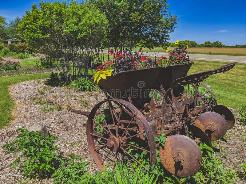Antique farm equipment used for gardening. Vintage, vibrant, flowers, floriculture, decore, decorative, yellow, orange, green, blue, colorful, red, purple stock photos