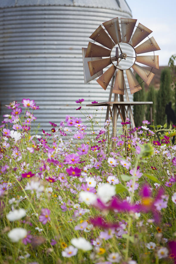 Antique Farm Windmill and Silo in a Flower Field stock image