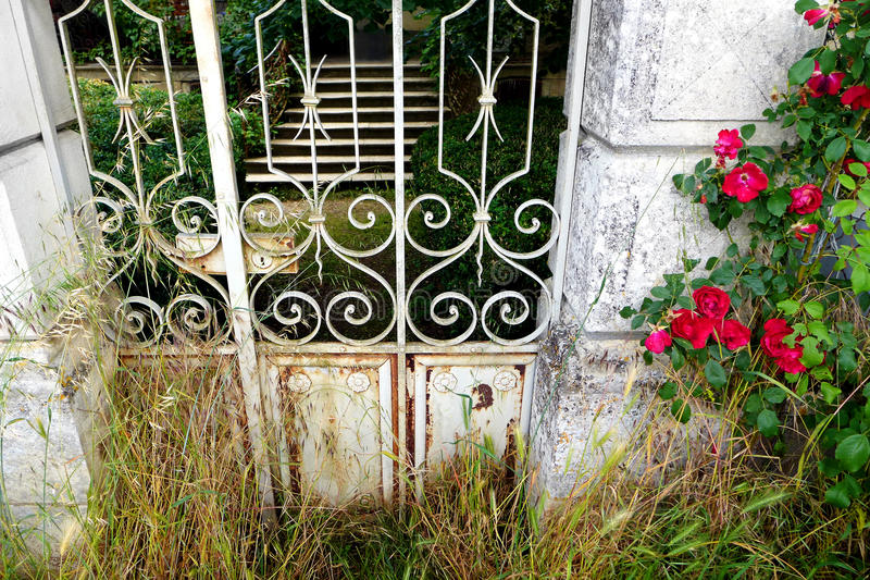 Garden gate with red roses royalty free stock images