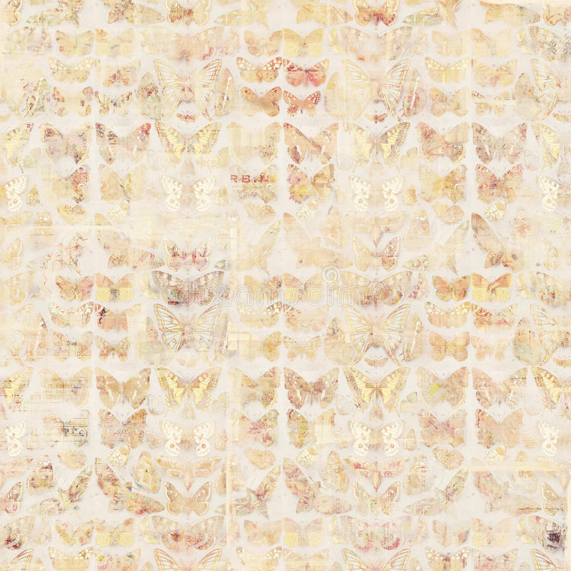 Antique grungy Vintage style botanical butterfly background on wood vector illustration
