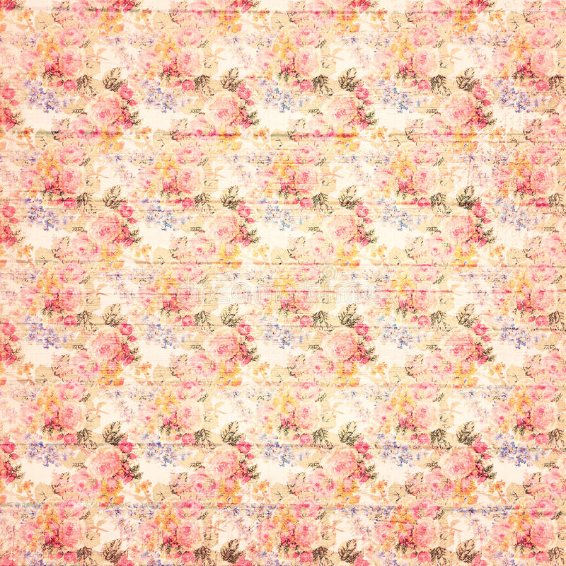 Antique grungy Vintage style botanical pink floral roses background on wood stock images