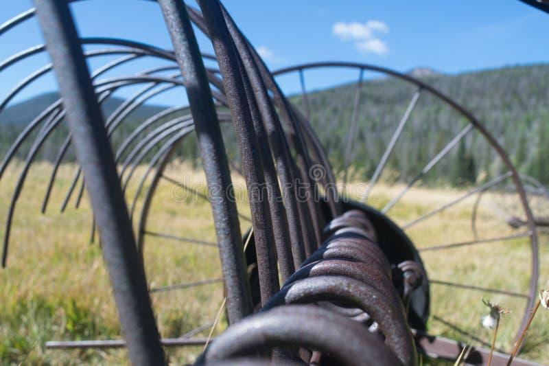 Antique Hay Rake in Pasture stock foto
