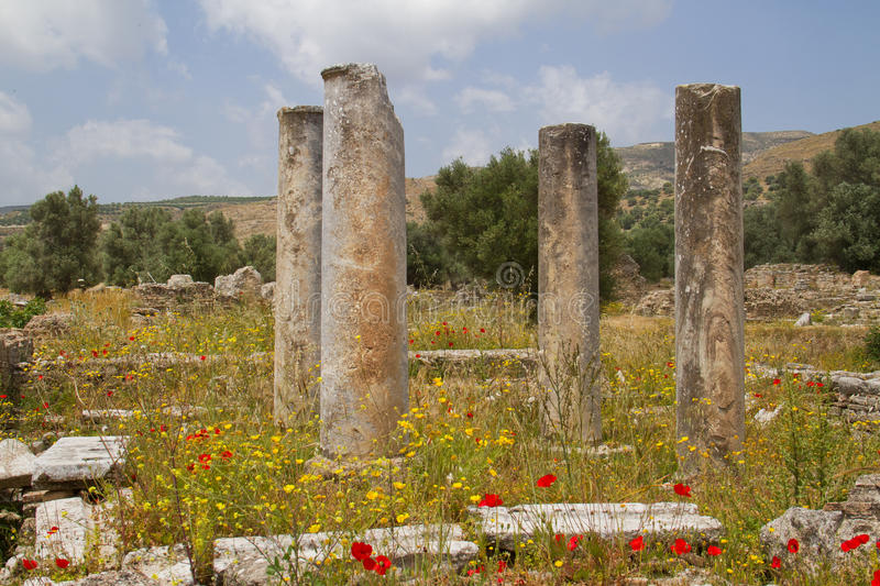 Antique pillars in Greece. Papaver and other flowers growing between pillars of the praetorium complex at Gortys, Crete, Greece stock photography