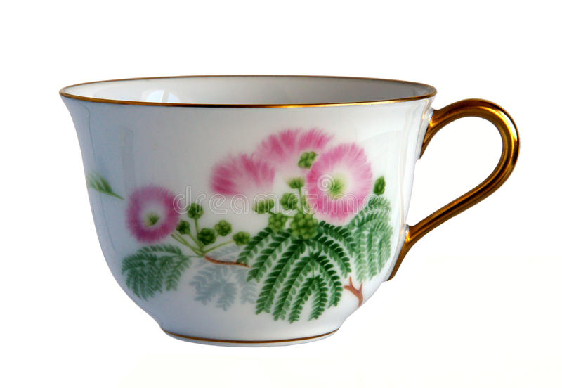 Antique porcelain cup. An antique porcelain cup Flowers of Persian silk tree isolated on white background royalty free stock photos