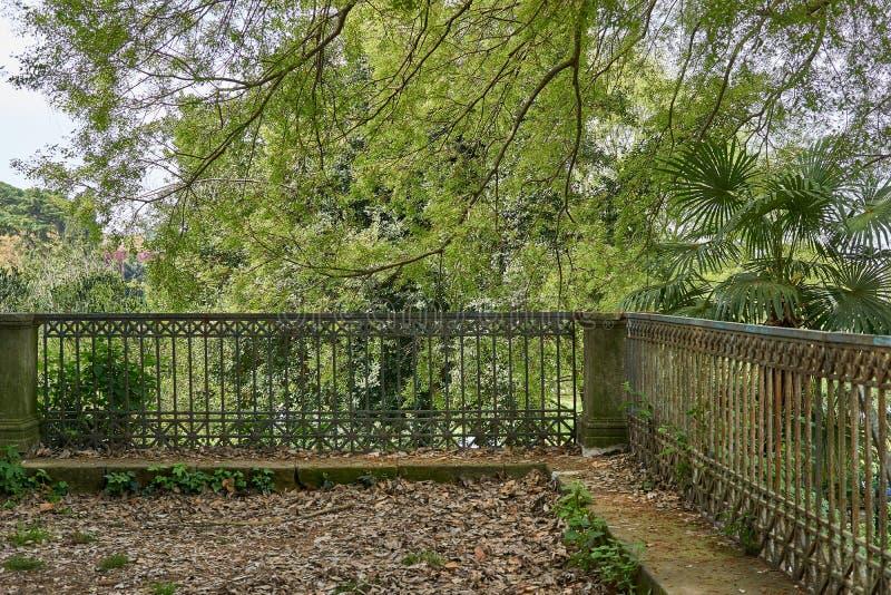 antique railing in nature stock photos