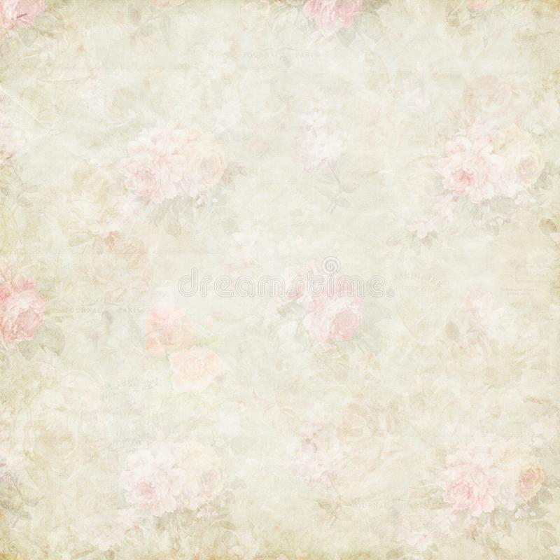 Antique shabby pink roses paper background vector illustration