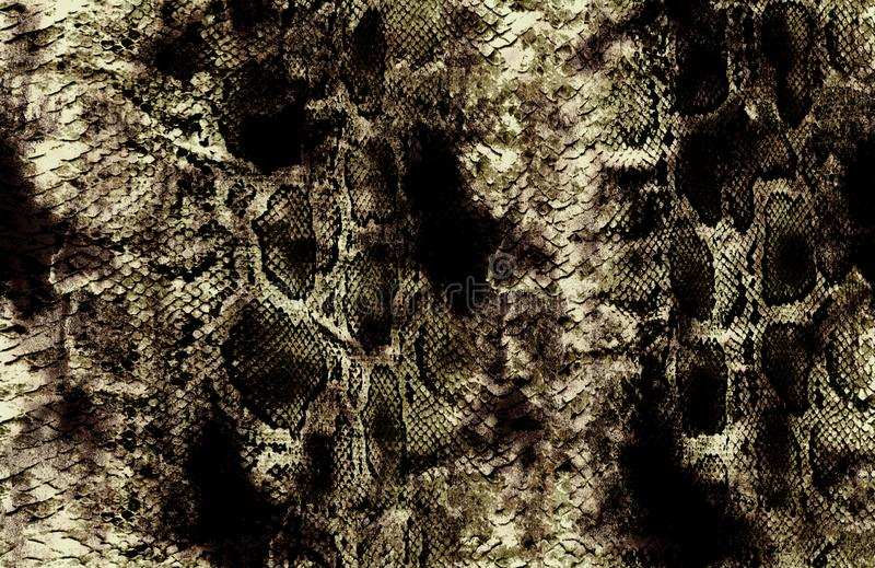 antique snakeskin and yellow background pattern stock photos