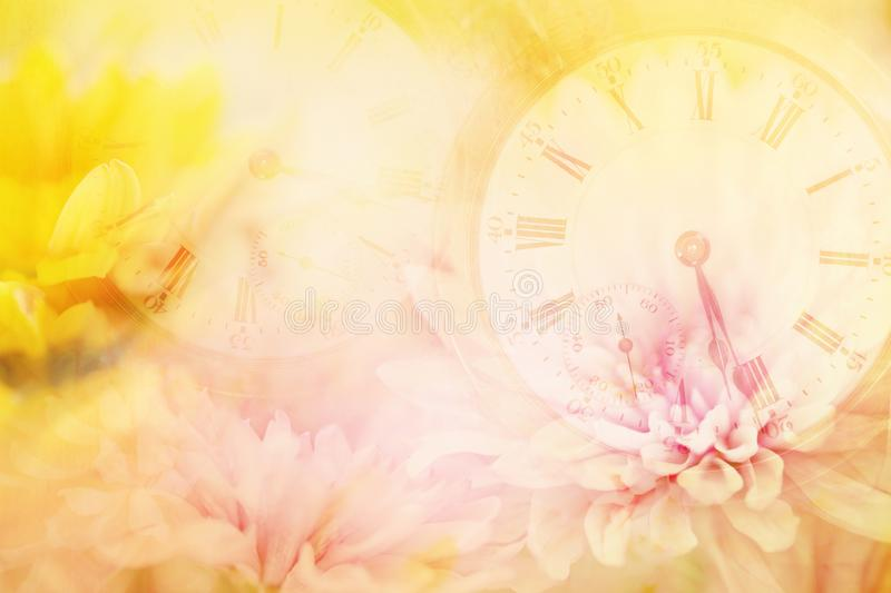 An antique time peace layered in soft pastel flowers. A layered horizontal photography image of clocks, time peaces, pocket watch layered in pink and yellow stock photos
