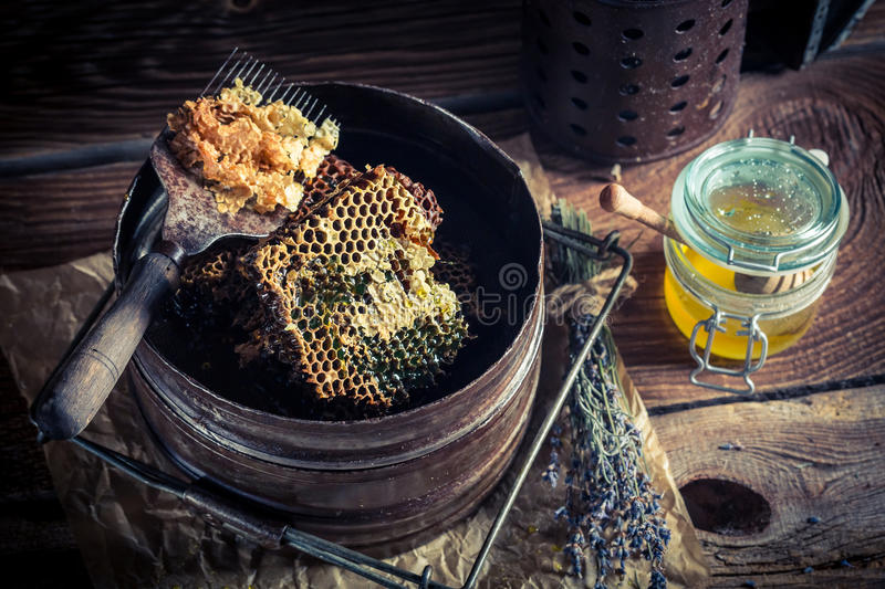 Antique tools for beekeeping stock photography
