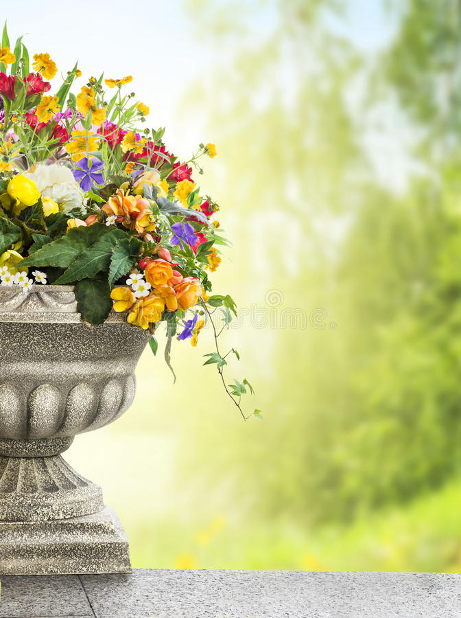 Antique vase with flowers in garden royalty free stock images