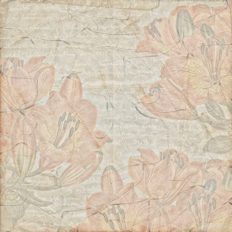 Antique vintage botanic paper background stock photo