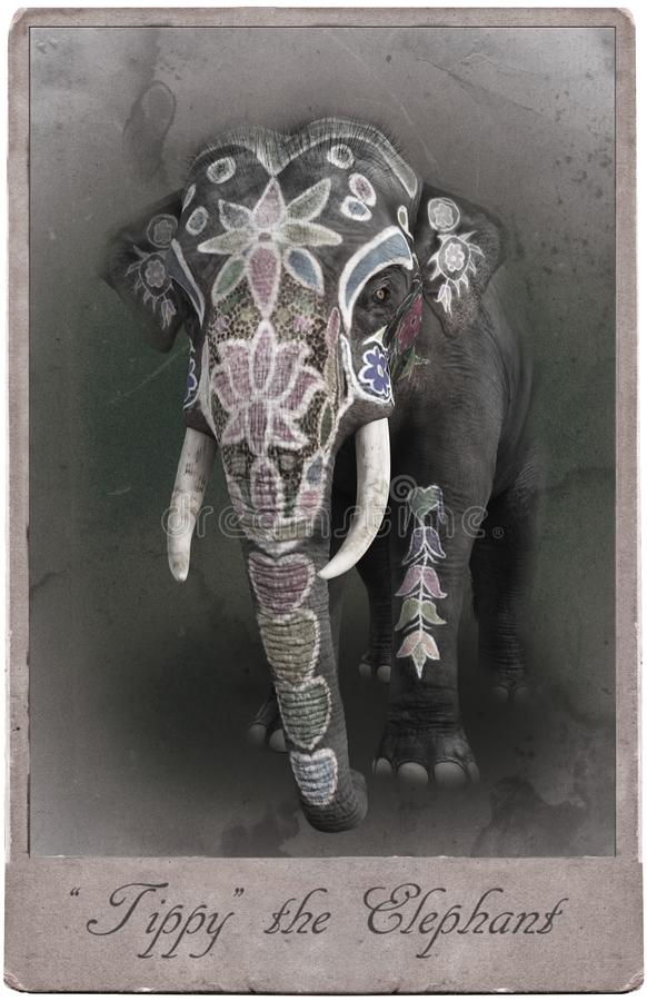 Free Antique Vintage Circus Card, Elephant, Fun Royalty Free Stock Images - 133641689