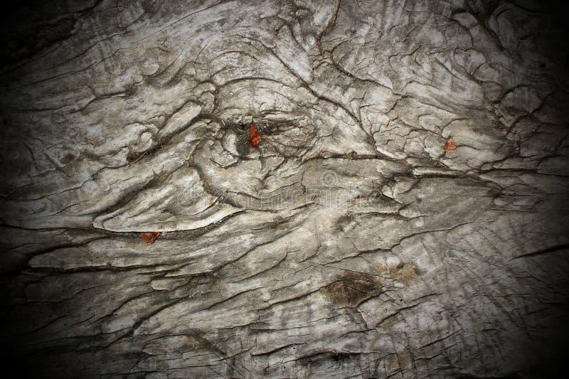 Antique wood pattern stock photo