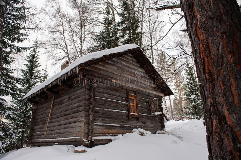 Antique wooden barn house. In winter forest. Retro building of the early 19th century royalty free stock photography