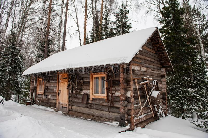 Antique wooden barn house. In winter forest. Retro building of the early 19th century royalty free stock image