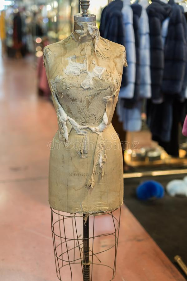 Antique, Worn and Dusty Tailored Bust for Women`s Dress royalty free stock image