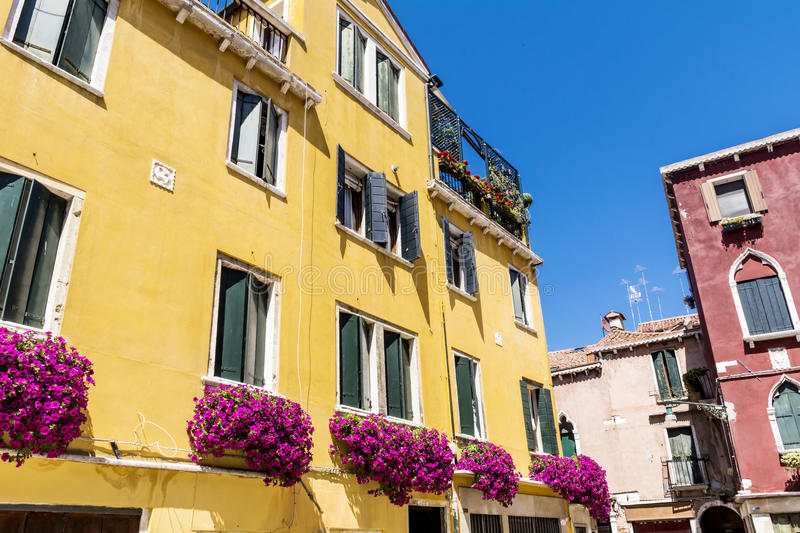 Antique yellow building with terrace with pink blooming petunia flowers in Venezia. Antique yellow house with balcony with pink blooming petunia flowers in royalty free stock photography