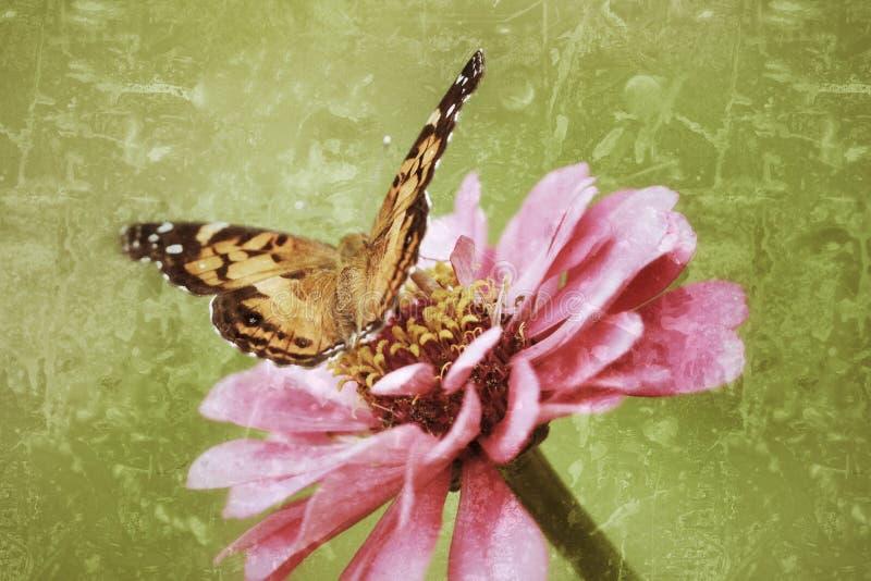 Antiqued foto van Geschilderd Dame Butterfly royalty-vrije stock afbeeldingen