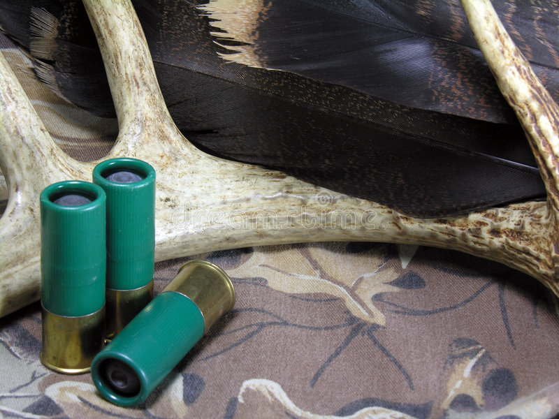 Download Antler Shells Feathers stock photo. Image of camouflage - 7096058