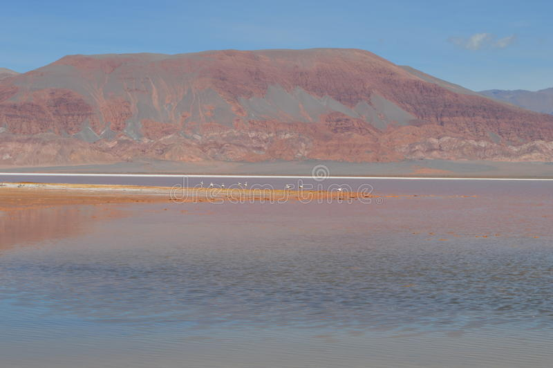 Antofagasta de la Serra fotos de stock